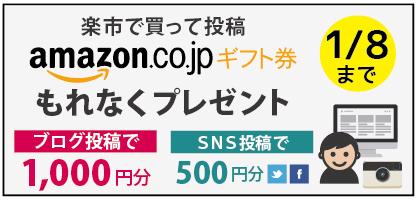 楽市で買ったキャンペーン5_ブログ用.jpg